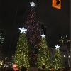 クリスマスがやってくる (Day 101)