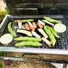 【コールマン(Coleman)のクールスパイダーステンレスグリルで自宅の庭でバーベキュー(BBQ)を楽しんでみた!】