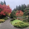 シアトル観光4  Seattle Japanese Garden(シアトル ジャパニーズ ガーデン)