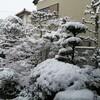 温暖な岐阜県南部に雪が積もったこと&ウイルス対策ソフトESETを3年継続したこと