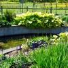 ガーデンデザイン探訪:ガーデンデザイナー、バニーギネスさんのすごいところを銀河庭園を例に検証してみた[銀河庭園@恵庭市北海道]