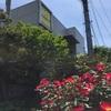 シャン ド ブレ:新横浜