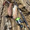 【ハイブリッド釣法】エギとメタルジグでコウイカ釣りにチャレンジ!深場や強風時に最適。in長尾鼻