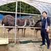 寄稿:ダチョウ肉の味とサスティナビリティに魅せられて、茨城県に牧場を立ち上げるまでの軌跡