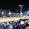 ラッキーの厳選穴馬★12/2(水)G2兵庫ジュニアGP(6番ツムタイザン)など計5レースの穴馬予想、地方馬の勝利が見たい!