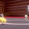 ポケモン剣盾コイキング6匹縛り攻略メモ8