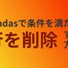 [pandas]特定の条件を満たす行を削除する