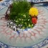 浜松グルメを食べつくそう♪グルメブロガーが浜松名物のおすすめ店を紹介!
