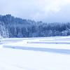 【英語】もうすぐ春ですが、まだまだ寒いので色んな「雪」の表現を調べてみました