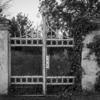 滑稽の門についての覚書|ひらけゴマ