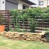 まとまりつつある庭