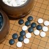 人間に勝てないと思われたAIが世界最強棋士に勝利した時代に。日本を代表する七冠棋士が考えていること 書評:勝ち切る頭脳