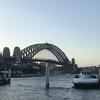 シドニー観光 BLIDGE CLIMB と Vivid Sydney