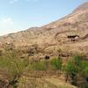 干しぶどうを食べながら、吐峪溝&葡萄溝でウイグル族の暮らしに触れよう!