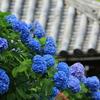 京都 西山「善峯寺」西国第二十番札所