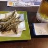 鹿児島に行ってきた【桜島&屋久島】(その2)