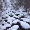 雪降る日光澤温泉