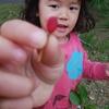 4月17日 辰巳の森緑道公園