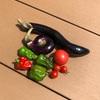 初心者の家庭菜園 2年目 ナス、ピーマン、トマト収穫