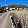 月影の井の池(仮称)(千葉県印西)