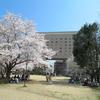 【風水的、  季節の変わり目「春分」前にするといいこと!】