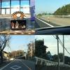 泊まって復興支援in熊本