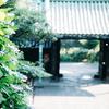 お寺と散歩、ときどき写真 湯島聖堂・神田明神・湯島天満宮編
