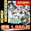 (メダカ) 紀州色彩セット 20匹セット + アナカリス 3本付き / ミックス 金魚藻 水草 メダカ 淡水魚