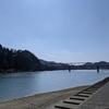 観音山から見た長良川