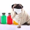 保健師が伝える、効果的な風邪予防。マスクをつけることは風邪の予防に効果なし?