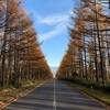 秋の八ヶ岳(1)