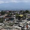 インドネシア・スラウェシ島震災への募金について