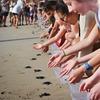 【子連れバリ旅行】バリのクタでウミガメの赤ちゃんの放流体験をしてみよう!