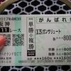 阪神競馬場(ガンサリュート 9走目)