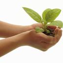 希望の舎―キボウノイエ―
