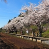 のと鉄道沿線お花見「のとさくら駅」(前編)