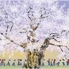 お友達みんなでお散歩ルンルン♬桜の木の下でお花見をする子供たち