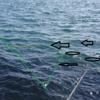 鮭釣:回遊コースとウキの位置取り/    今日の紋別港釣り情報