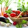 夏野菜を大量収穫!!栄養満点旬の野菜たち~(^^)