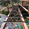 探検シリーズ:相模湖の廃道を調査せよ。