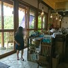 石垣島初日のランチ 中村屋さんでカレーとワイン