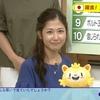 「ニュースチェック11」8月22日(月)放送分の感想