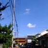 6月23日(木)午後から快晴