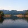 亀山ダムでフィーディング祭り