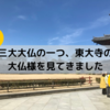 三大大仏のひとつ、世界遺産「東大寺」で大仏様を見てきました