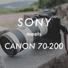 【SIGMA MC-11】SONYのカメラでCANONの白レンズの使い方【EF70-200mm F4L IS USM】
