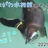 【レポ#22】半年ぶりの水族館!しながわ水族館現地レポート(2021/4/23)【前編】
