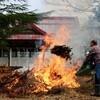 「佐久の季節便り」、霧雨そぼ降り、「焚き火・焼き芋」日和…。