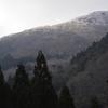 雨水の梶ヶ森遊山 枯れ山