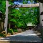 【大神宮下】NIKKOR Z 24-70mm f/4 S と、船橋大神宮  August  2019
